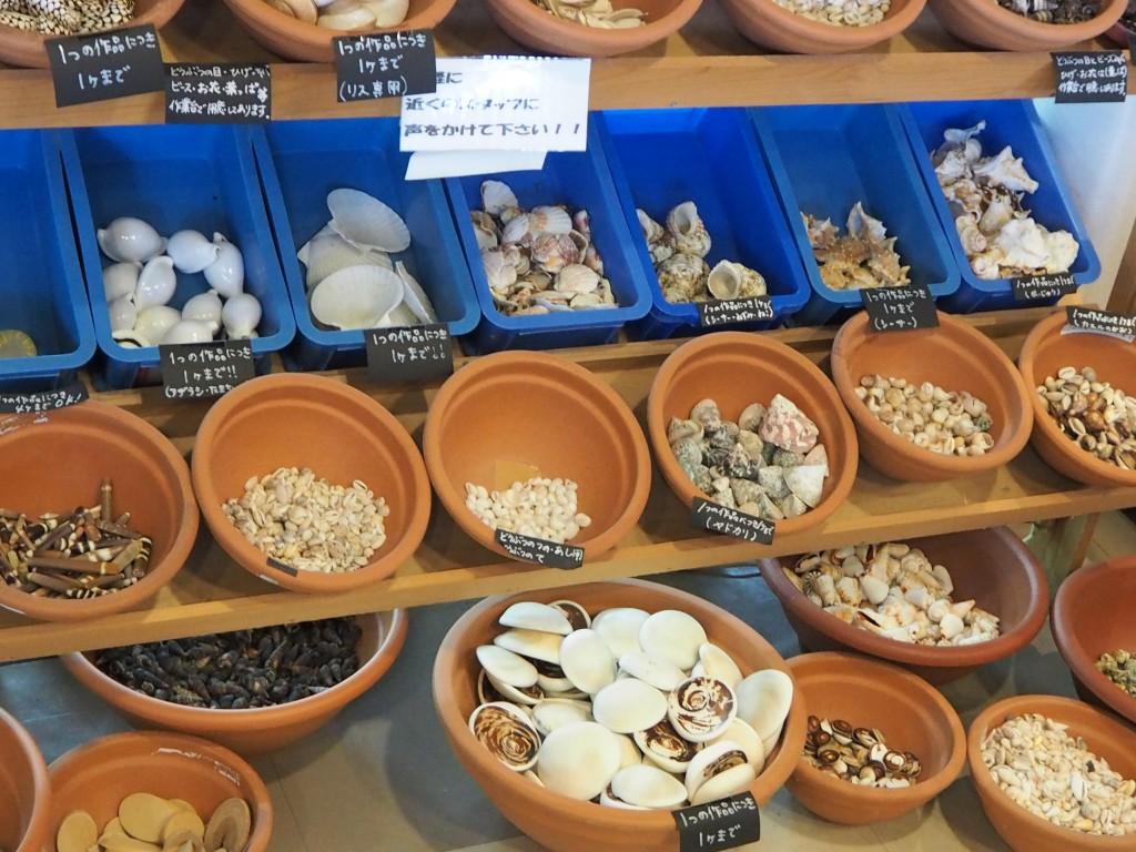 貝の素材も豊富