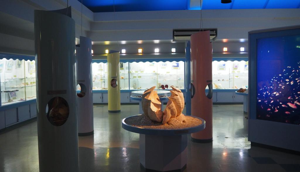 海宝館 シェル ミュージアム