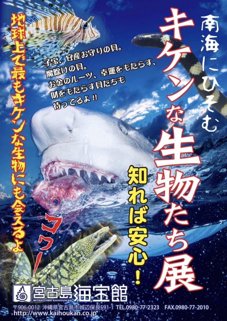 海の危険生物ポスター