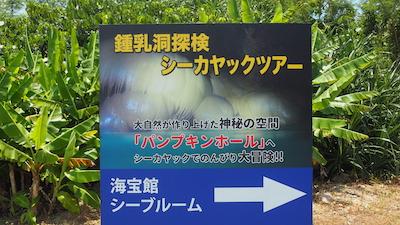 夏の特集:宮古島で鍾乳洞探検!パンプキンホールの神秘に触れる冒険ツアー